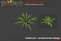 IMG:http://stuff.unrealsoftware.de/pics/s3dev/models/spiderplant_pre.jpg